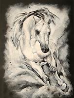 Andrea Plank, horse