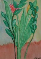 Marija-Weiss--Dr-Plants-Plants-Trees-Contemporary-Art-Contemporary-Art