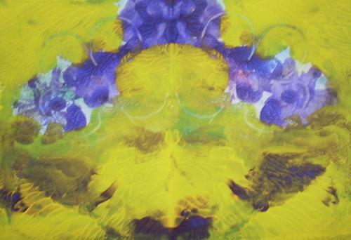 Marija Weiss, Dr., Blume, Plants: Flowers, Plants, Abstract Art