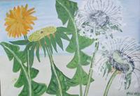 Marija-Weiss--Dr-Plants-Flowers-Plants-Modern-Age-Expressive-Realism