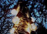 BERTOLOMEOS, Kabelbaum - Lichtinstallation