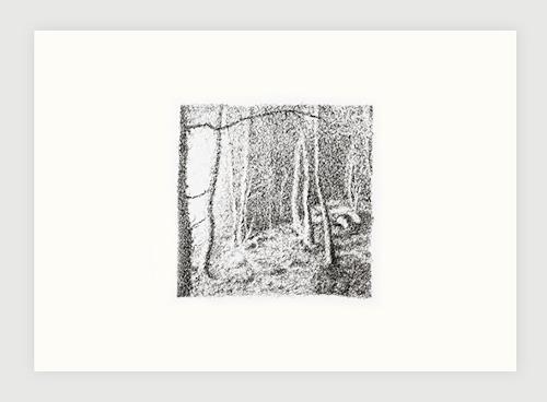André Schäffer, Waldbild, Poetry, Nature: Wood