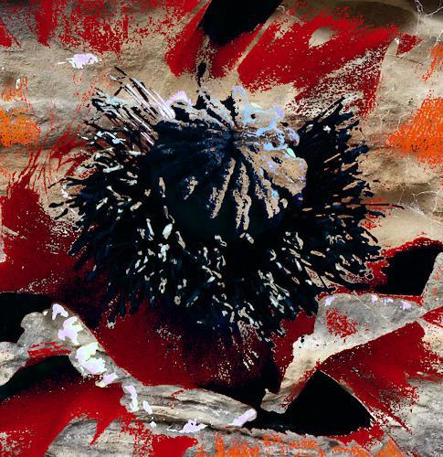 Susanne Köttgen, Digital Art Work, Miscellaneous, Abstract Expressionism